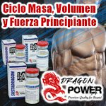 Ciclo Masa, Volumen y Fuerza Principiante. Dragon Power